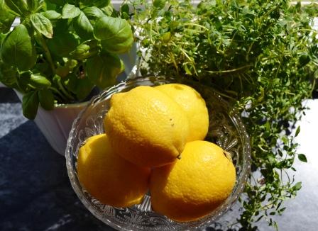 Citronörter Livsaptit