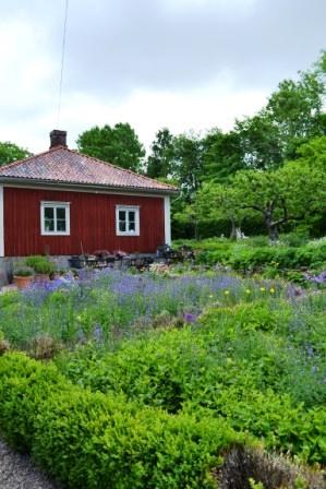 Hemma hos Sarenström, 7. Livsaptit