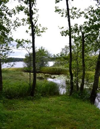 Natur, småland, Livsaptit
