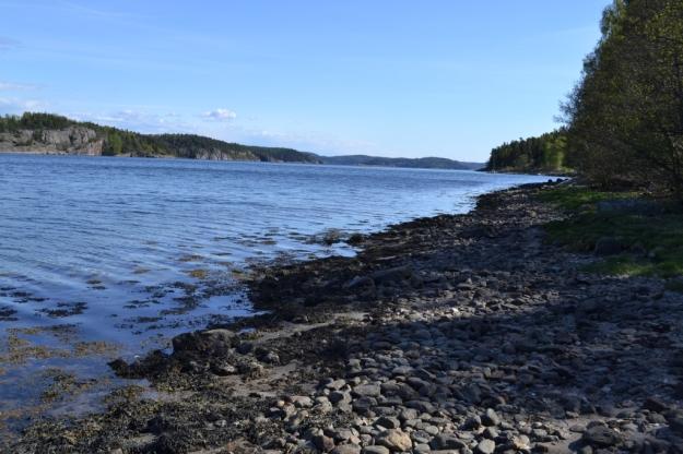 Gullmarsfjorden från stranden, Vann, Besök av Livsaptit