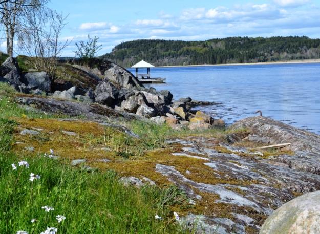 Omgivnigar, liten pir ut i Gullmarn, Vann, Besök av Livsaptit