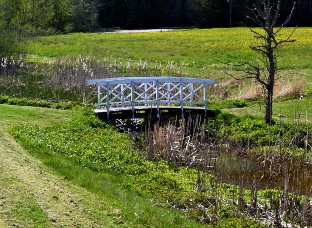 Omgivningar, söt liten bro, Vann, Besök av Livsaptit
