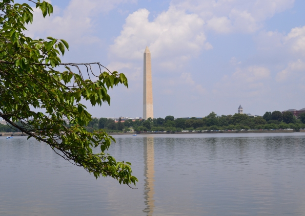 Washington Memorial över Tidal Basin med körsbärsträd, sommaren 2015, Washington D. C., Resedagbok, USA, Livsaptit