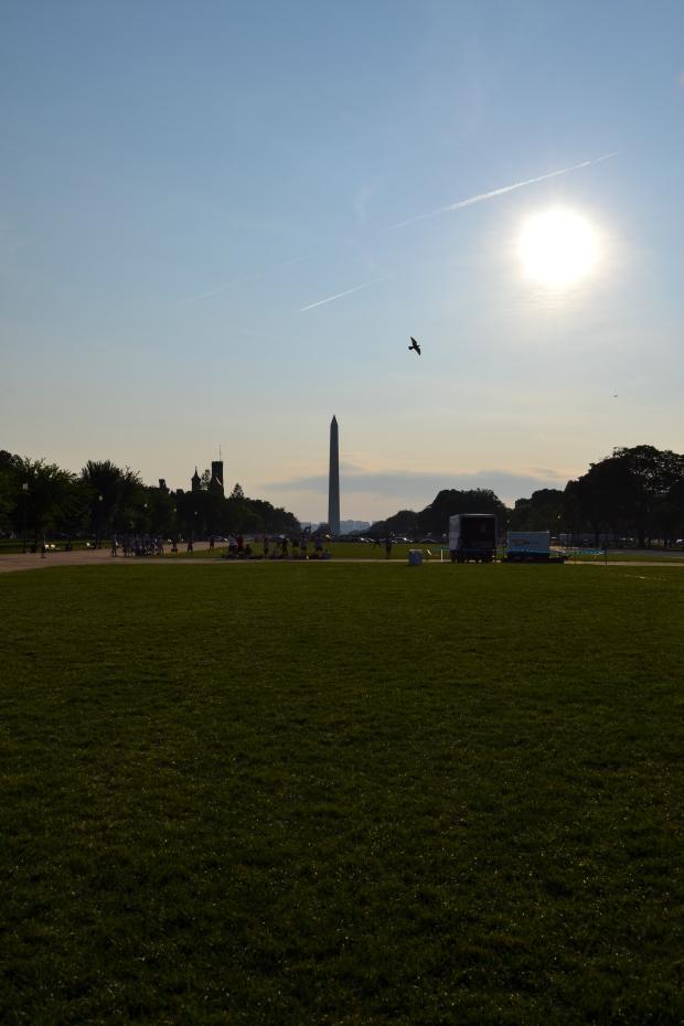 Washington Memorial i strålande sol från National Mall, sommaren 2015, Washington D. C., Resedagbok, USA, Livsaptit